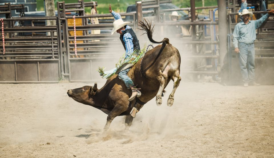 Mercedes Benz West Houston >> Don't Miss Professional Bull Riders in Roanoke - Berglund Cars