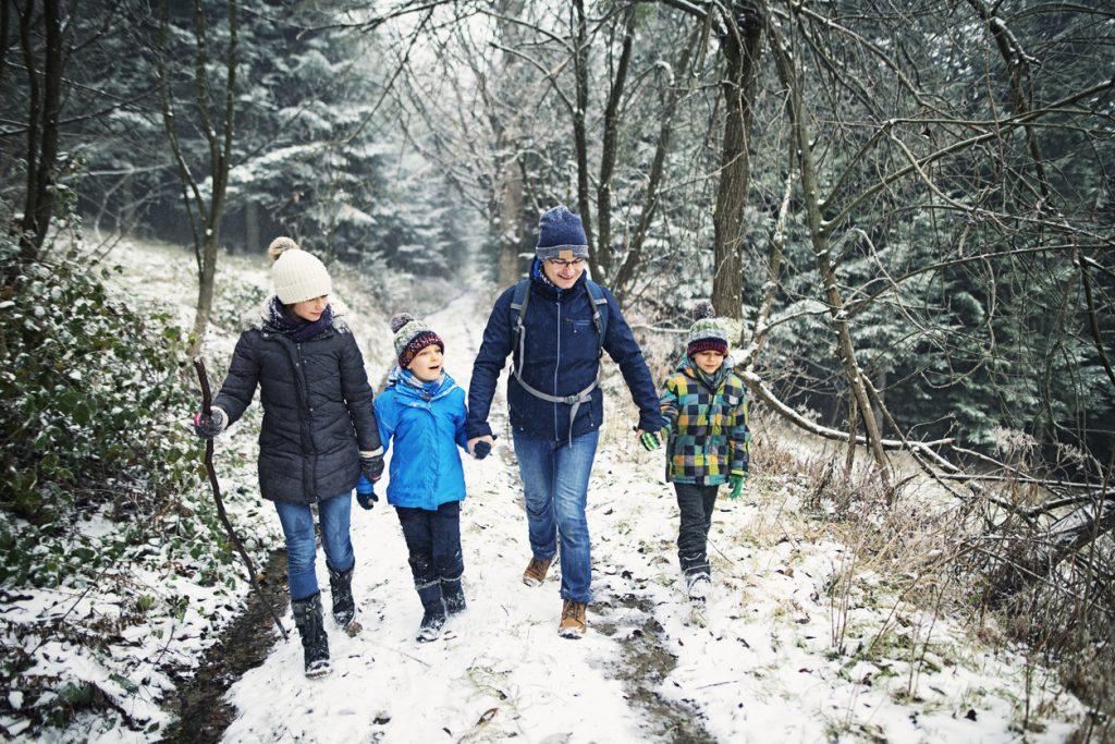 Roanoke winter