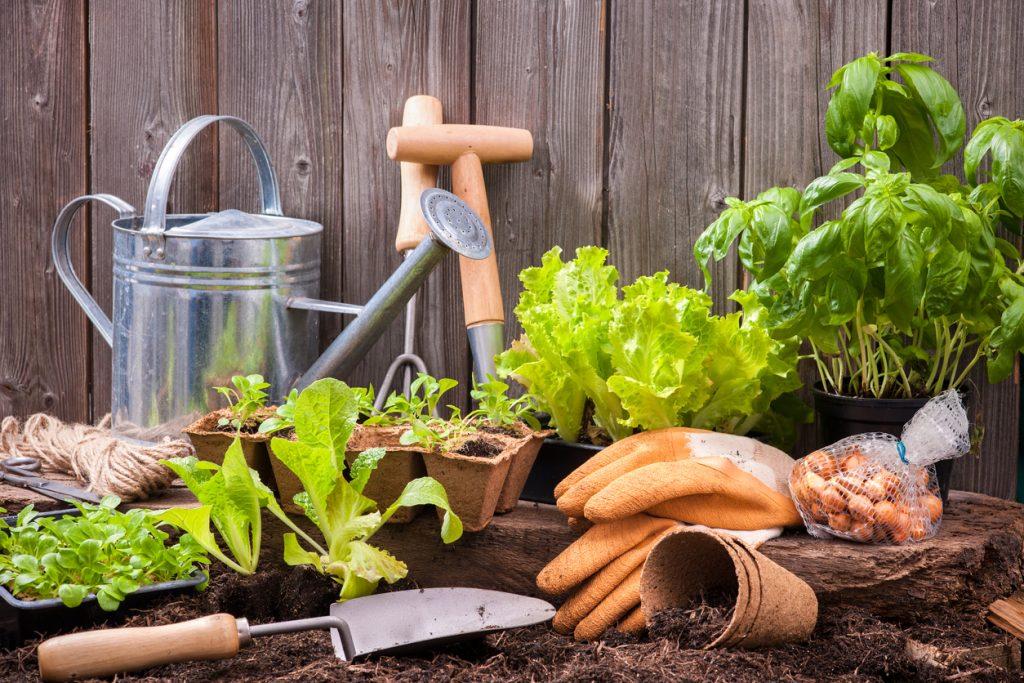 Greater Roanoke Home & Garden Show