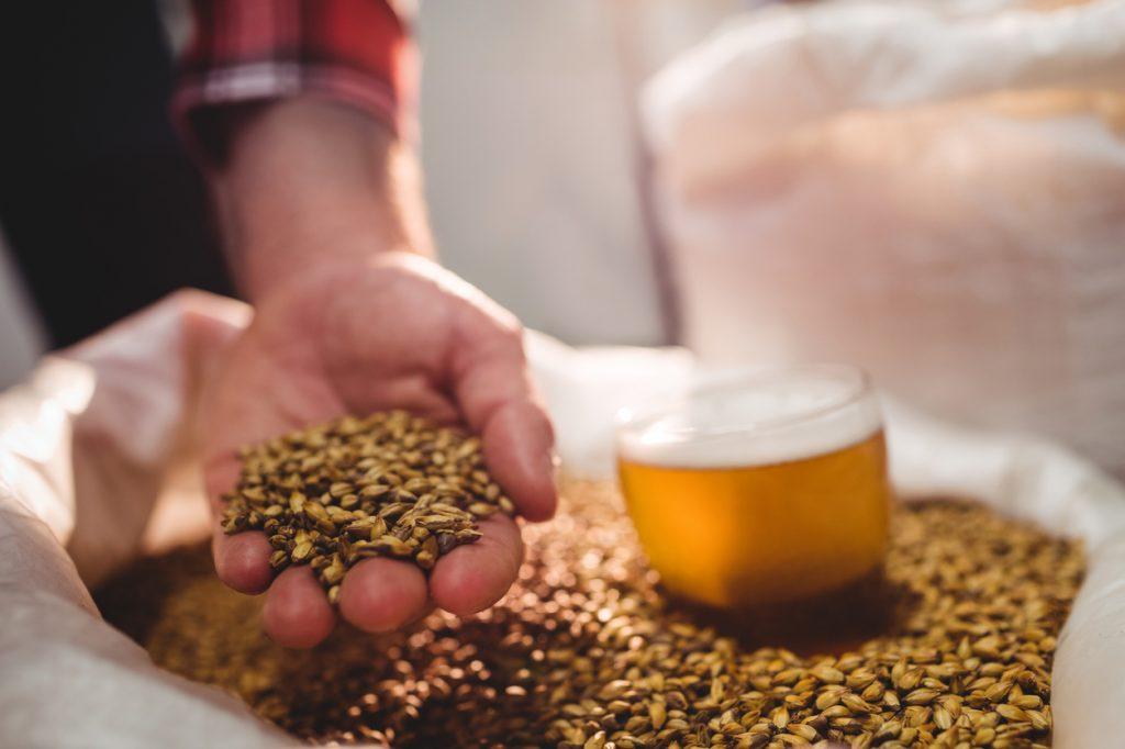 Roanoke Breweries