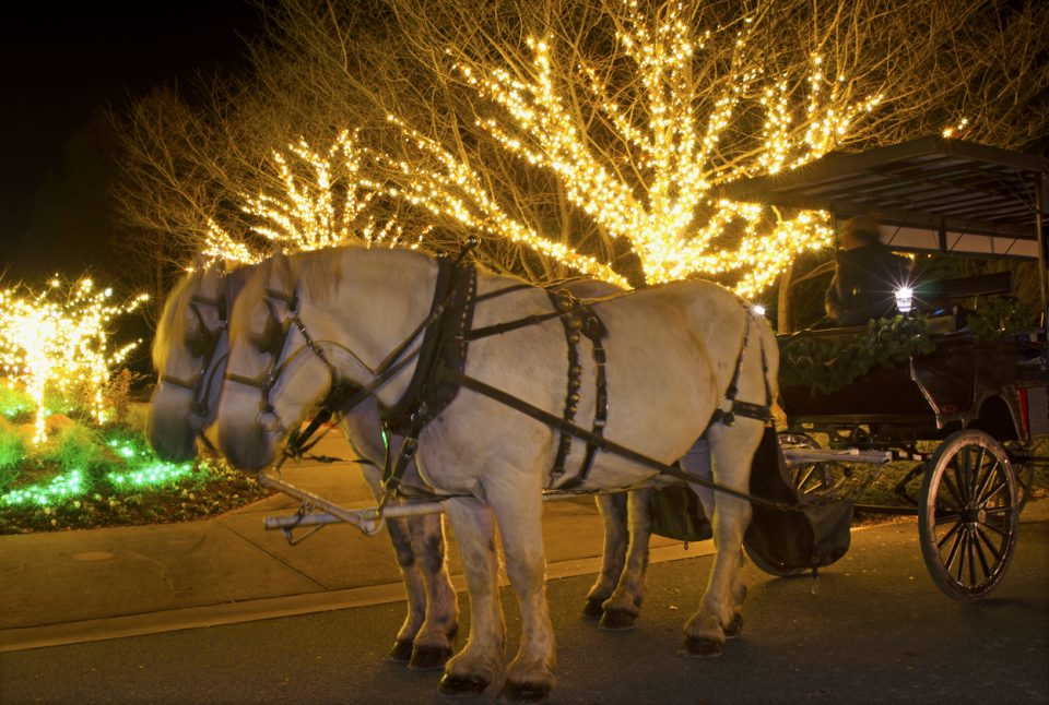 Roanoke Times Dickens of a Christmas