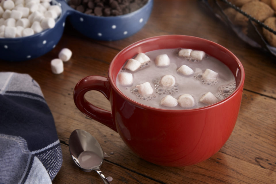 Cup of hot chocolate with marshmallows