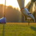 Enhance Your Golf Swing With These Tips